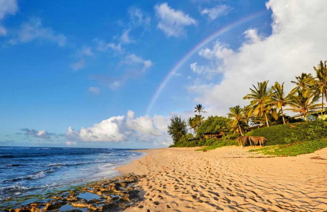Hawaii Legislative Committee Passes Marijuana Legalization Bill