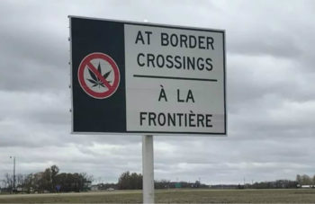Canadian Woman Faces Lifetime Ban After Getting Caught With CBD Oil at U.S. Border 2