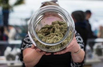 Cannabis Canada Daily: How Ontario Lost $42M Selling Cannabis During Its Last Fiscal Year 2