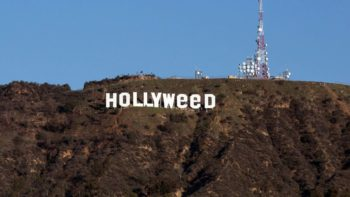 Once Upon a Time in Hollyweed: 42 Celebs Who Toke 2