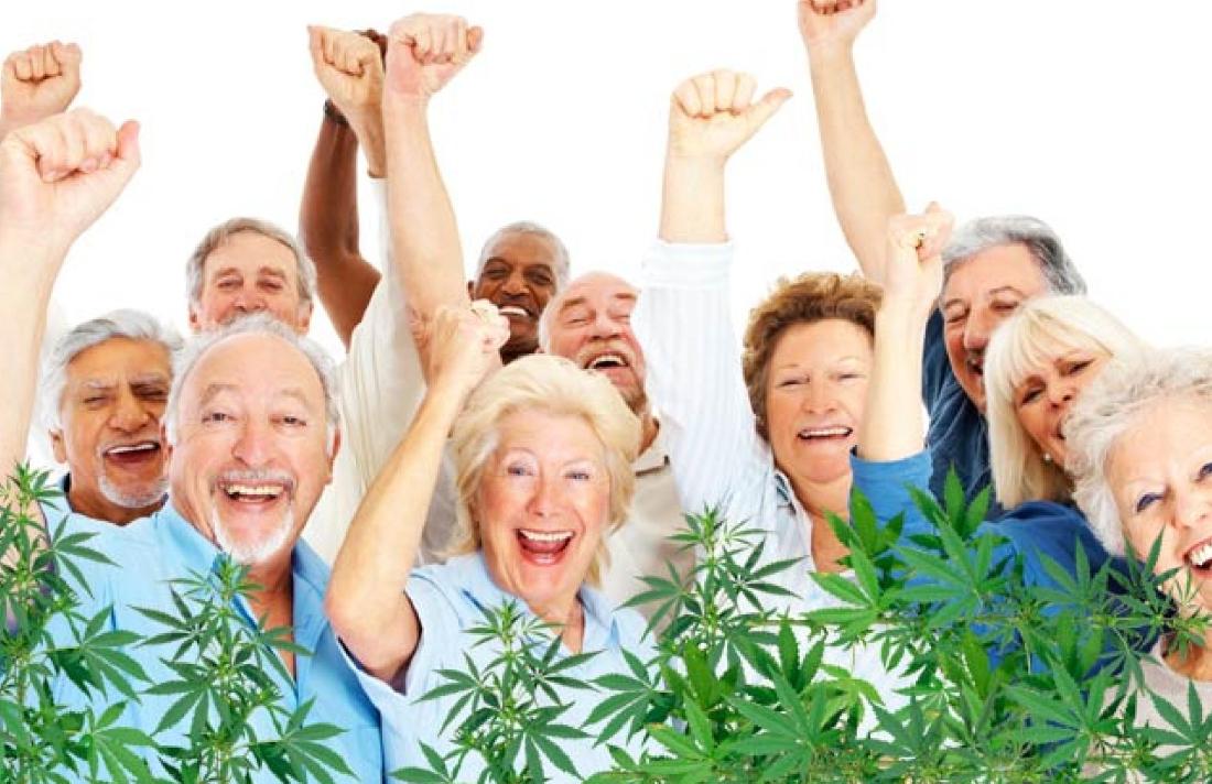 76543erwereertertertertertesexcvnior - The Ultimate Guide to CBD and Seniors With Arthritis