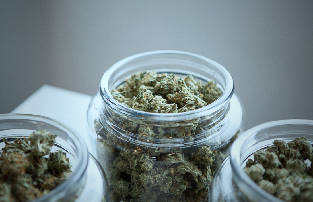 1qazxsw23edcvfr45tgbnhy67ujmki89olp0 - 7 Common Misconceptions About Cannabis