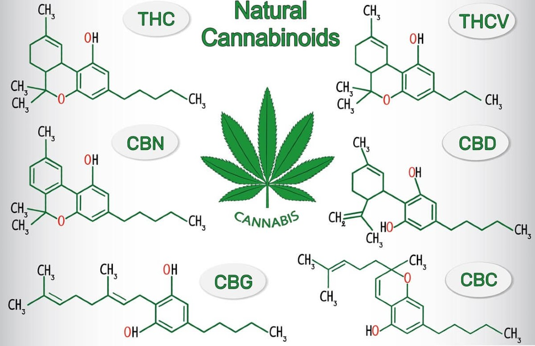 cannabiscompounds3456786543245675432 - What Is CBG—And Is It Different Than CBD? Experts Weigh In