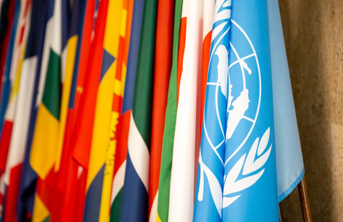 un34yw45yw45yw56y56yplplkjytresasrty - The World Health Organization Says Reschedule Cannabis: Will The UN Agree?