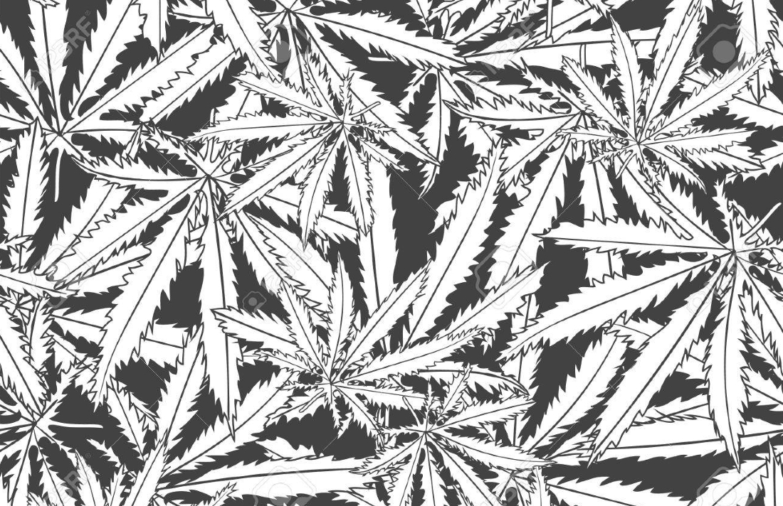 48040984 abstract marijuana cannabis seamless pattern background vector illustration - Decarboxylation: How to Activate Cannabis