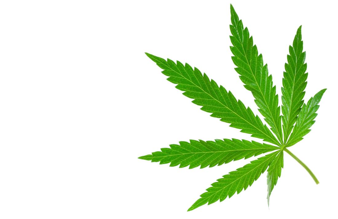 cannabis3r82093r823r23 - Patients Prefer Medicinal Cannabis In Chemotherapy Trial