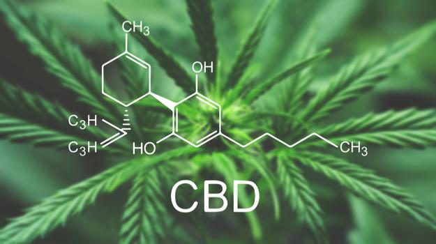 cbd - CBD Cream: The Ultimate Guide