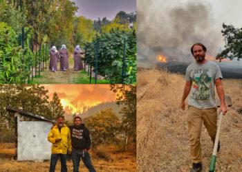 facesofdestructionPIX 350x250 - Cannabis Cultivators Suffer Devastation as Wildfires Rage in the West