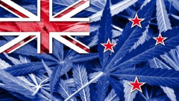 New Zealand Suspends Helicopter Searches for Cannabis Crops