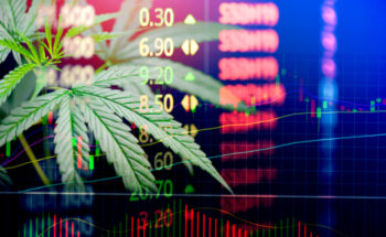 , Sundial Cannabis Hyped On r/WallStreetBets