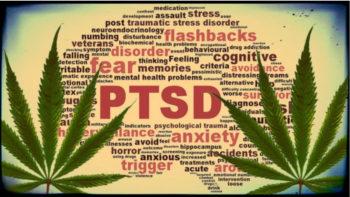 , Veterans Try Cannabis To Treat PTSD