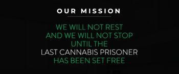 Last Prisoner Project Spring Update